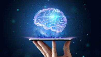 image human brain