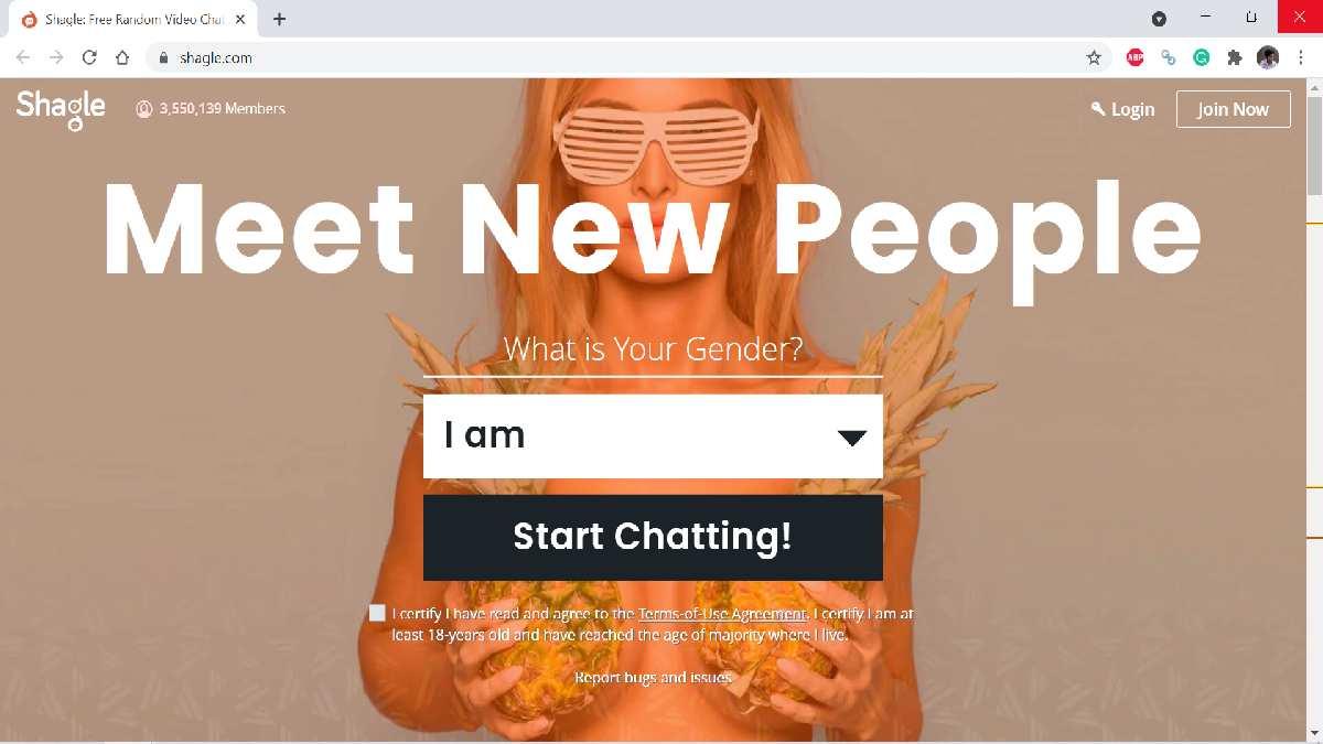 Shagle - A free random video chat app