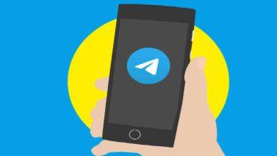 The Best Bots for Telegram [2021]