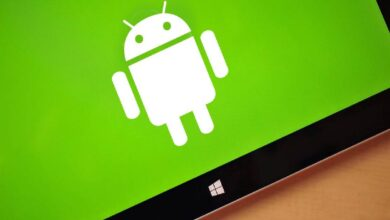 Why did Android outlast Windows Phone?