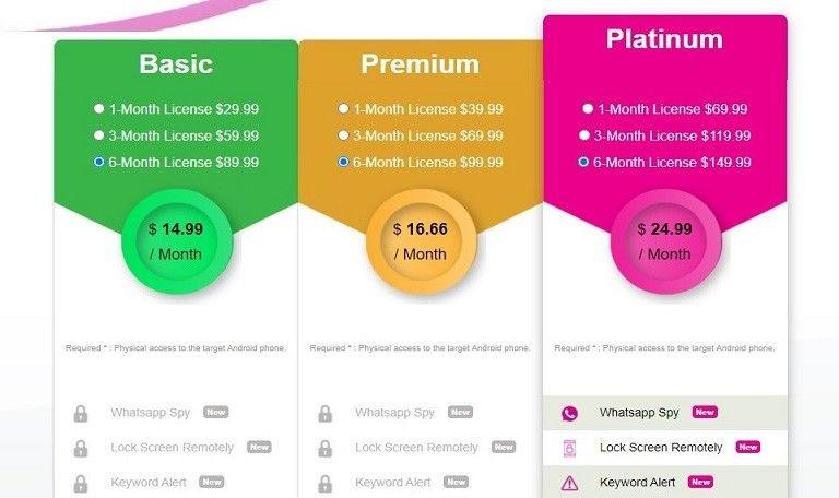 TheWiSpy price plan
